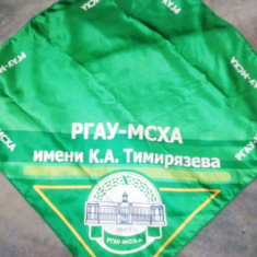 Сувенирная продукция: Платок с лого